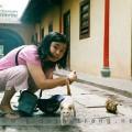 ttt-t11-2011-sg