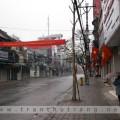 mung1tet2010-01