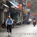 mung1tet2010-05