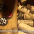 cellar1900-052012-5
