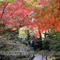 japan2014-02