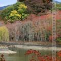 japan2014-03